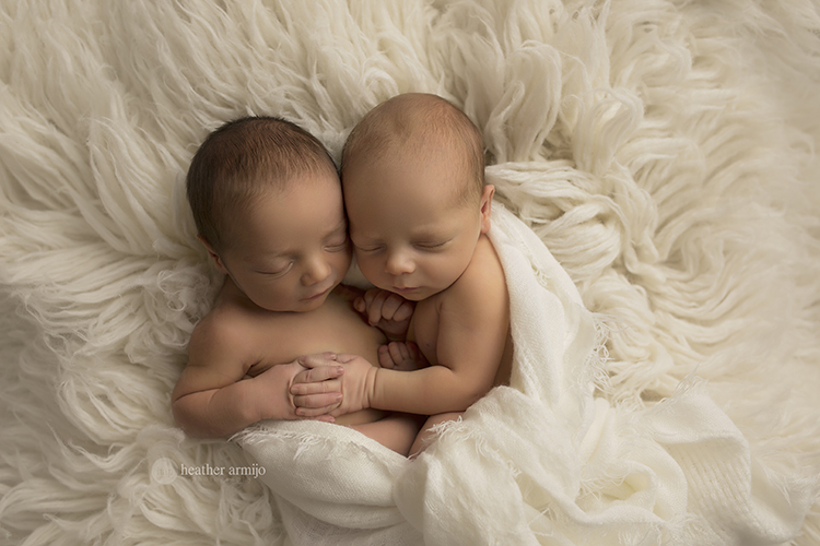 houston katy texas baby newborn best multiples twins professional maternity twin multiples photographer